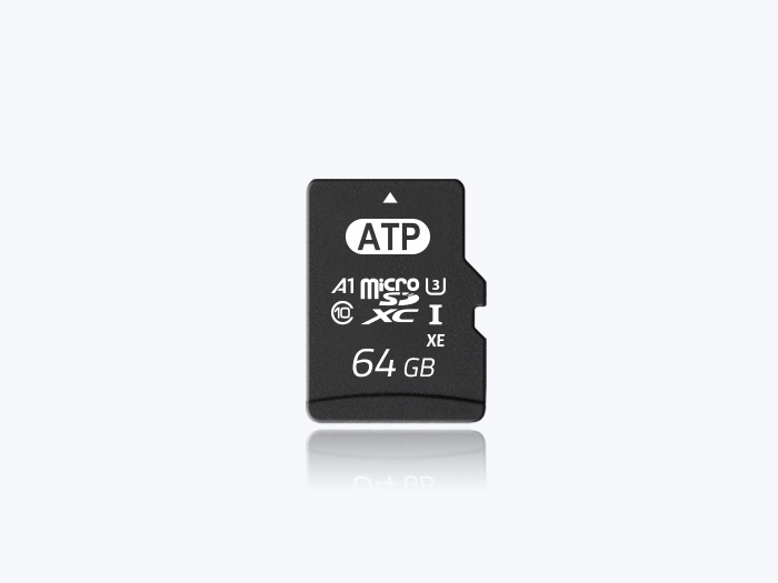 Industrial Micro SD cards