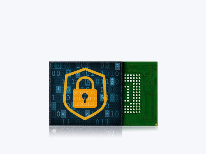 SecurStor-enabled managed NAND solutions